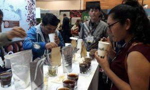 Kopi Gayo Aceh