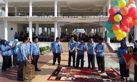 Buka O2SN Rohil, Jamiludin Harapkan Siswa Berprestasi dapat Harumkan Rokan Hilir